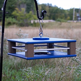 Covered Patio Bluebird Feeder