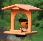 Single Oriole Feeder